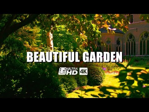 Beautiful Garden 4K/UHD | Ultra-HD | 4K Resolution | Digital Cinema | Demo | Panasonic Lumix DMC-GH4