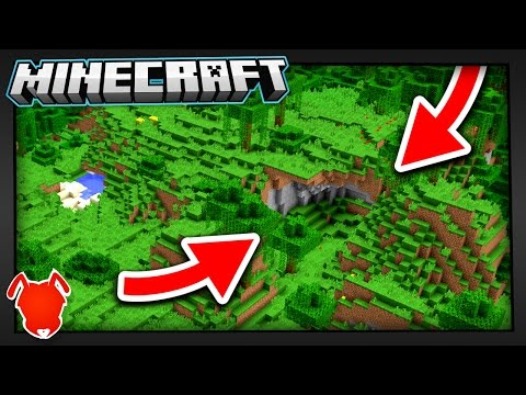 THIS is the RAREST BIOME in MINECRAFT?!