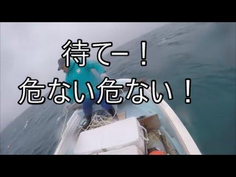 サメ駆除の仕掛けにアレがかかった!!!
