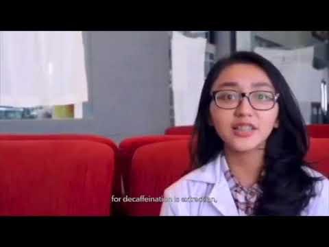 Universitas Indonesia - Team Indo Engineers