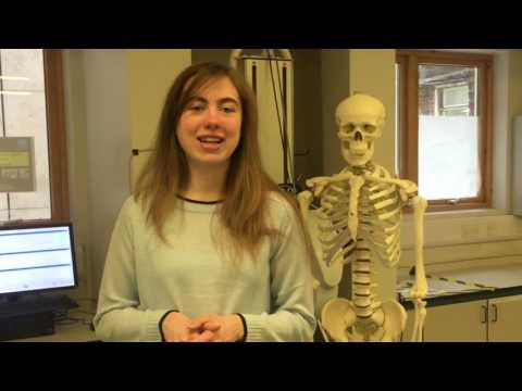 Kingston University sport science student Serena Blundell on her Clearing experience