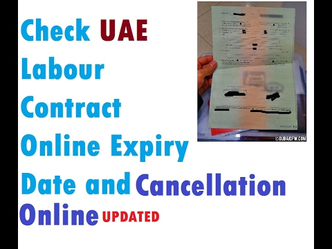 mol.gov.ae Check Labor Contract Online UAE Dubai