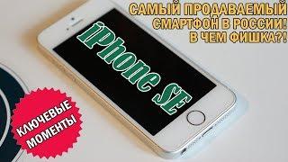 Почему iPhone SE - самый продаваемый смартфон в России? Главное о лучшем компактном смартфоне