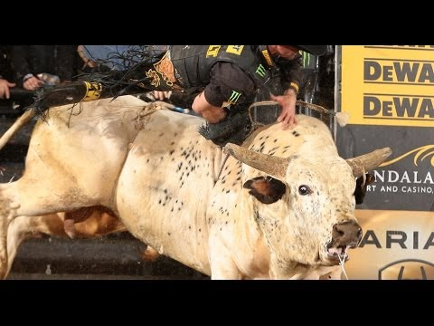 TOP BULL: Palm Springs throws Guilherme Marchi  (PBR)