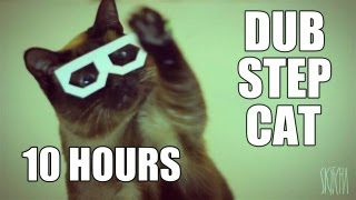 stereo skifcha | dubstep cat [10 HOURS VERSION]