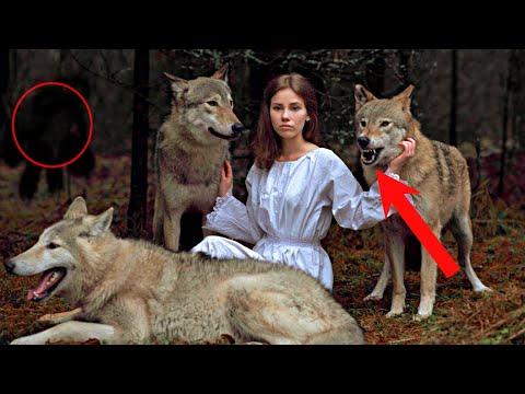 Все были в ИЗУМЛЕНИИ, узнав зачем эту девушку окружили ДИКИЕ ВОЛКИ в лесу. Они рычали и скалились...