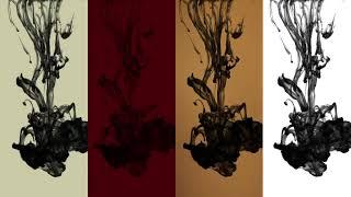 Les Couleurs - Inside CHANEL (VF)