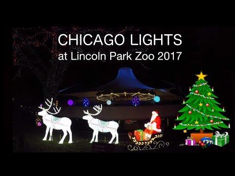Luces de Navidad en Lincoln Zoo Chicago | Lincoln Park Zoo lights 2017