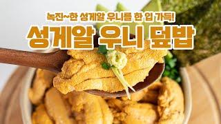 성게알(우니) 성게덮밥 훈훈수산