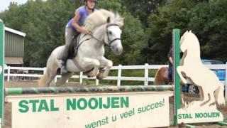 ponyhof ponykamp 2013 week 3 darco x