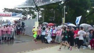 第31屆那霸馬拉松42k處關門秀 2015 12 6