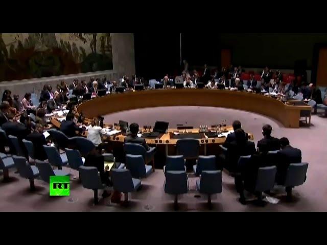 Прямая трансляция заседания Совбеза ООН под председательством Виталия Чуркина