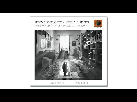 "Serena Spedicato-Nicola Andrioli ""The Shining Of Things. Dedicated To David Sylvian"" 2019 Dodicilune"