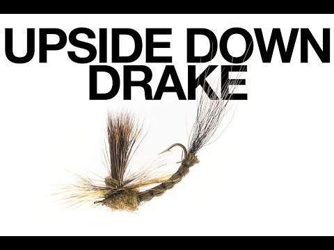 Upside Down Green Drake