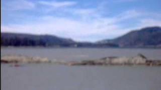 THE BIG BEAR LAKE MONSTER