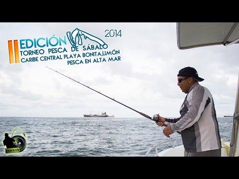 Torneo Pesca de Sábalo Caribe Central, Limón Costa Rica