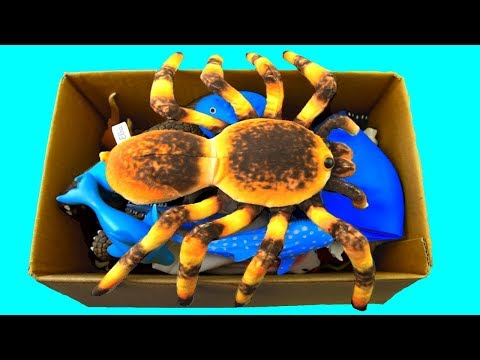 Learn Colors With Wild Animals in a Tub | Shark Toys For Kids