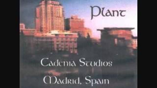 robert plant acoustic 1993 29 palms