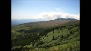 杉並児童合唱団 - グリーン・グリーン