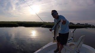 Early Morning Topwater Striper Fishing