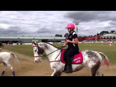 Sport Horse Racing Australian Championship - 2015 Royal Melbourne Show Horses In Action
