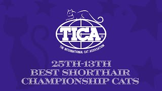 25th13th Best Shorthair Championship Cats