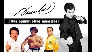 Bruce Lee   ¿Que opinan otros maestros?  