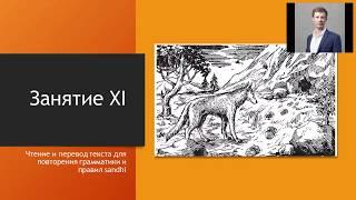 Курс грамматики санскрита МГУ, занятие 13 (Учебник В.А. Кочергиной, Урок XI, часть I) (Хитрый Шакал)