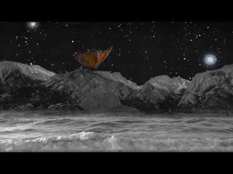 Sleeps animation