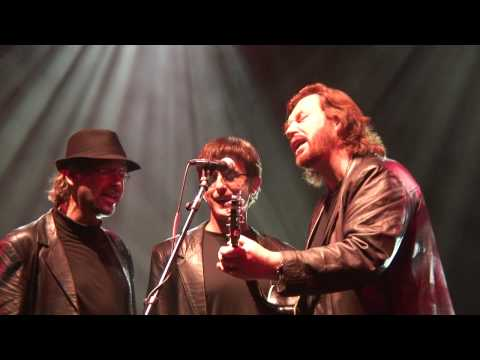 The Australian Bee Gees Show - Medley