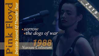 Pink Floyd - Sorrow / The Dogs Of War | Nassau 1988 - Re-edited 2019 | Subs SPA-ENG