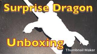 Unboxing our Leatherback Hypo Zero Bearded Dragon from Optimumreptile.com.