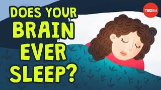 Can you be awake and asleep at the same time? - Masako Tamaki