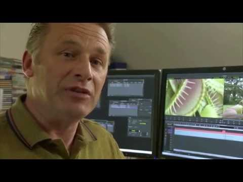 How To Present Your Wildlife Films With Chris Packham | Episode 2 | Eden Shorts