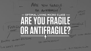 Are You Fragile or Antifragile? Thumbnail