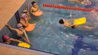 Открытый урок в бассейне / лягушата / учимся плавать /