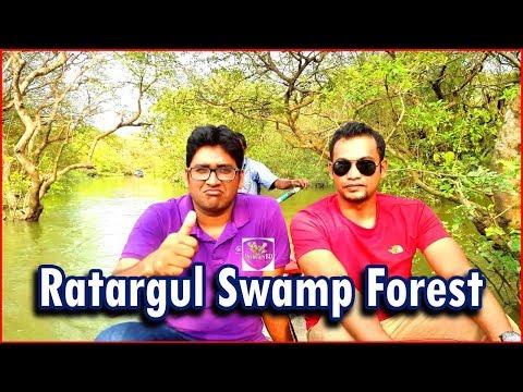 Ratargul Swamp Forest | Ratargul Tour | Ratargul Sylhet | Ratargul Goainghat | Ratargul Bangladesh