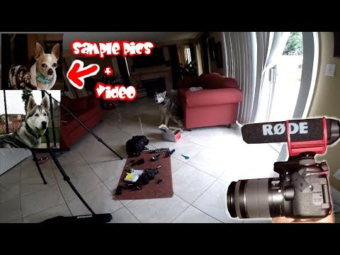 The PERFECT Canon 70D Setup Unboxing!! (Video Test + Pictures) Rode Mic Go