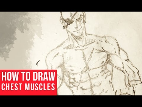 How To Draw Chest and Arm Muscles - YouTube