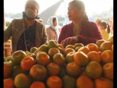 Manipur's 14th Orange Festival promotes organic farming - Manipur News in Manipuri