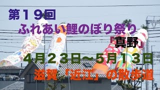 第19回ふれあい鯉のぼり祭り「真野」