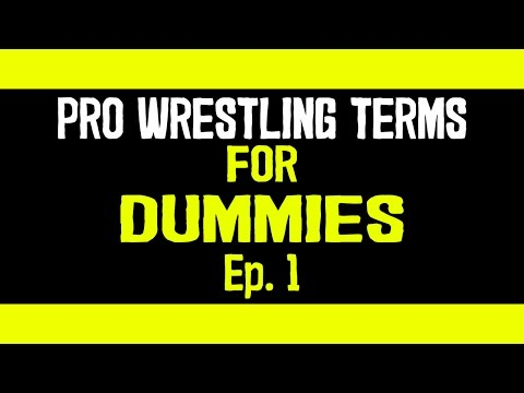 Top 10 wrestling terms YOU need to know! ( LetsTalk Pro Wrestling Terms Ep.1 )