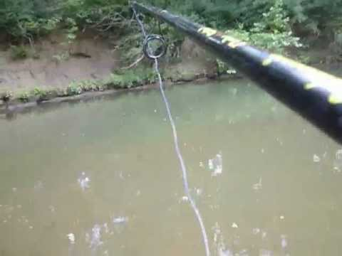 Small creek gar fishing youtube for Small creek fishing
