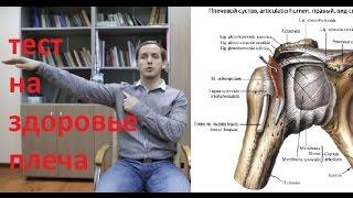 видео Боль в плечах, лечение - почему болят плечи, как лечить боли в плечевых суставах