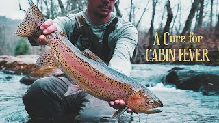 A Cure for Cabin Fever FLY FISHING BLUE RIDGE GA