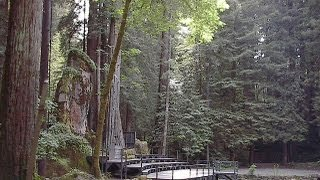 Bohemian Grove 2013, The Bombing of Hiroshima and The Murder of Bill Cooper w/ Anthony J. Hilder