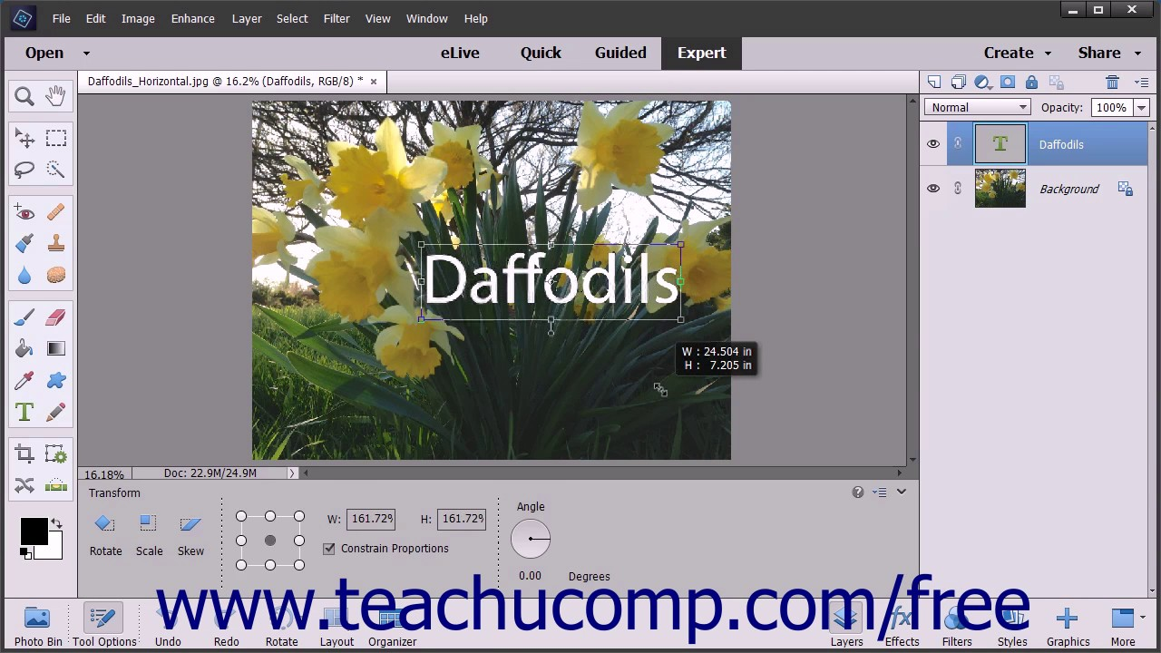 Photoshop Elements 15 Tutorial Vector Graphics Adobe Training