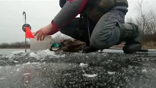 Ловля щуки на ставку в Беларуси Рыбалка на щуковки Зимняя рыбалка на жерлицы по первому льду