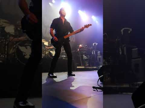 The Stranglers live in Wellington NZ