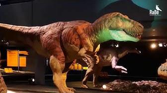 «T. rex – Kennen wir uns?» - Impressionen der Ausstellung